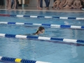 schulschwimmen_2015_-38