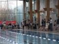 schulschwimmen_2015_-52